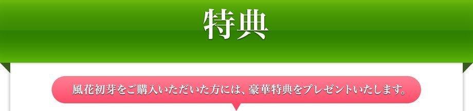 8_ttl.jpg